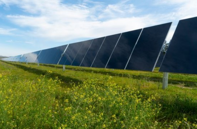 Renewable Energy Companies Form Alliance to Advance Ultra Low-Carbon Solar Technology