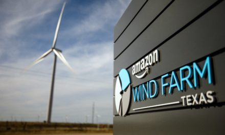 Amazon Launches $1 Billion Sustainability Bond Issue to Fund Green & Social Projects