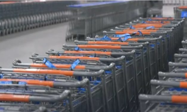 Walmart, H&M, IKEA & Kingfisher Launch Climate Initiative for Retail Industry